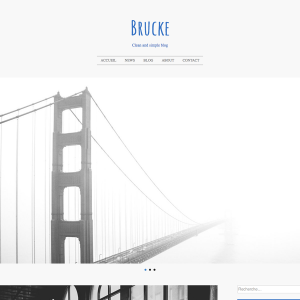 Brucke Pro